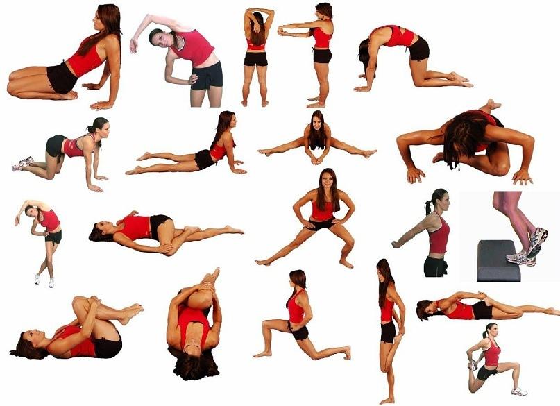 Упражнения для растяжки для начинающих на шпагат