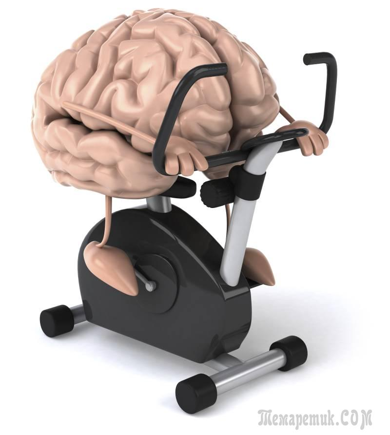 Hook-ups (Brain Gym) - Provo School District