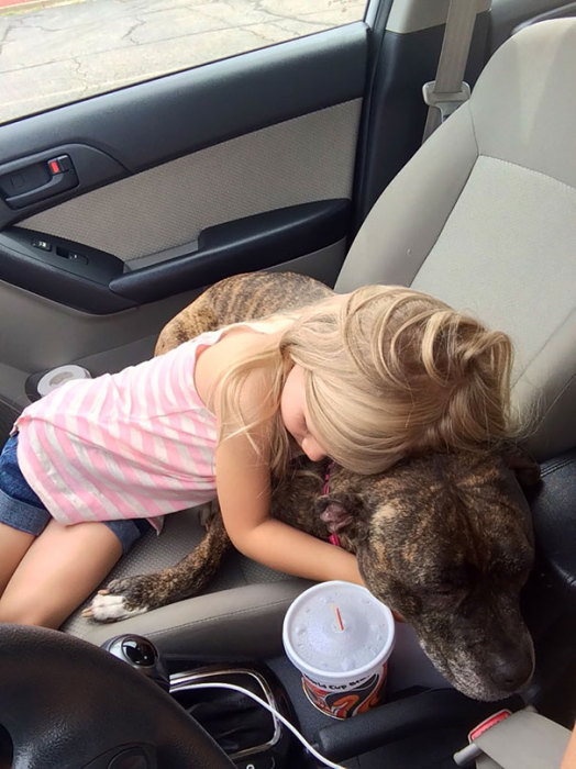 Девочка обняла любимую собаку, сказав, что прививки — это не больно.