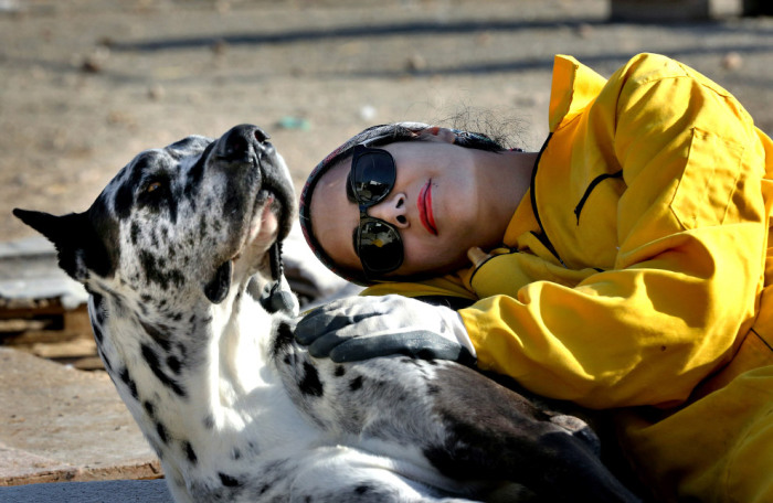 Это приют для животных в Тегеране, Иран, которые был создан на пожертвования в 2004 году. Здесь находится более 500 собак разных пород. Фотограф Vahid Salemi.