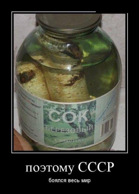 Поэтому СССР боялся весь мир демотиваторы, картинки, юмор