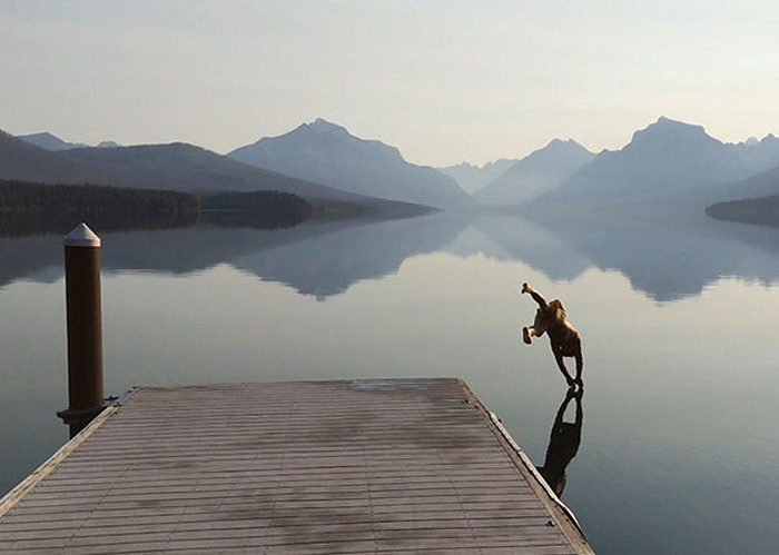 Идеальное отражение до входа в воду.