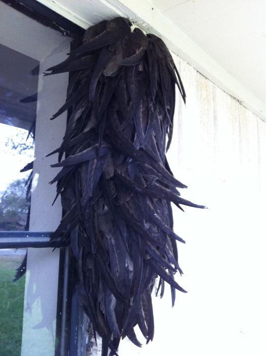 Птицы, приютившиеся на окне дома.
