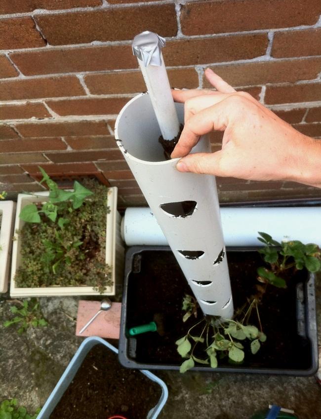 Вертикальный способ выращивания клубники 83