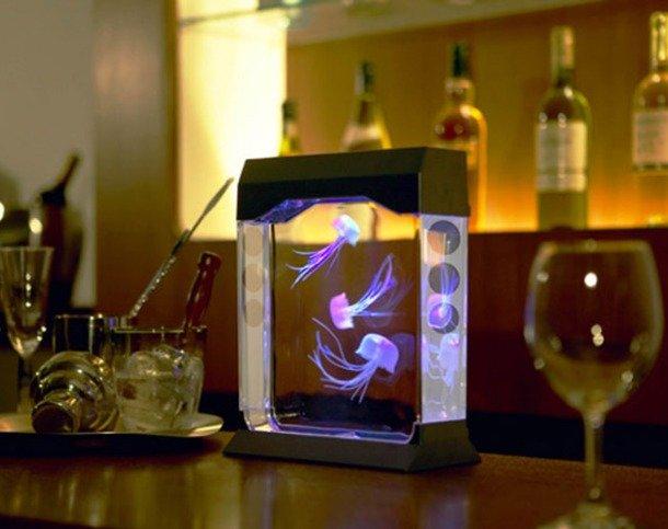 Аквариум в интерьере: интересные идеи: <b>Аквариум с медузами</b>. Огромным успехом в Японии пользуется аквариум Aquapict Jellyfish, в котором медузы, изменяющие свой цвет, плавают как в