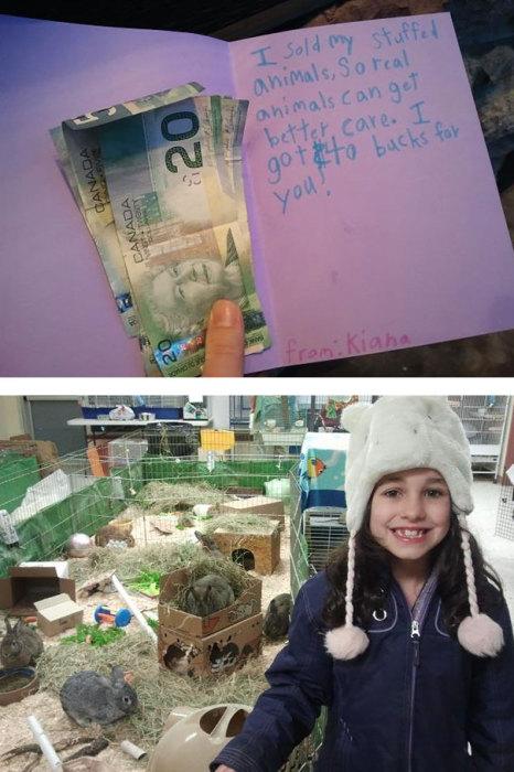 Девочка продала свои мягкие игрушки, чтобы помочь животным из местного приюта.