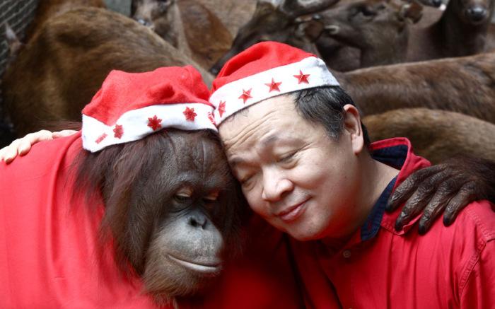 Закадычные друзья. Фотограф Xinhua News Agency.