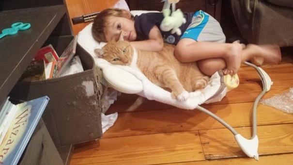 Абель и Ларри сразу стали лучшими друзьями дружба, кот, мальчик