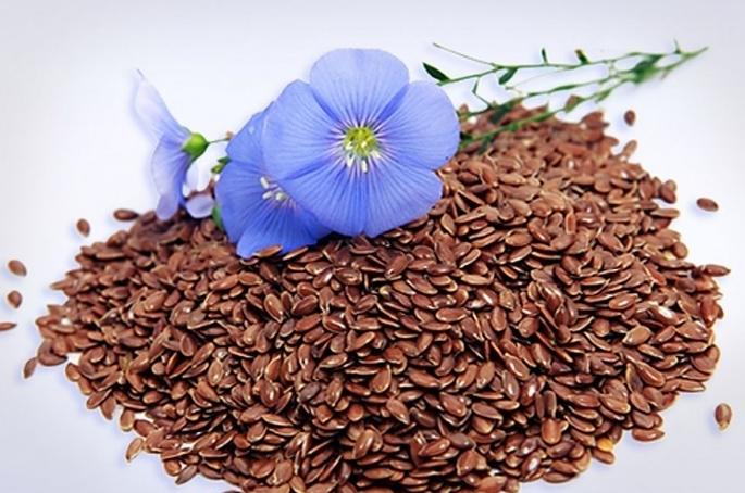 Семена льна.jpg