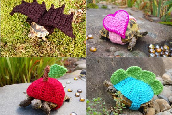 Вязаные костюмы для черепах - красивое оружие против вымирания пресмыкающихся (10 фото)