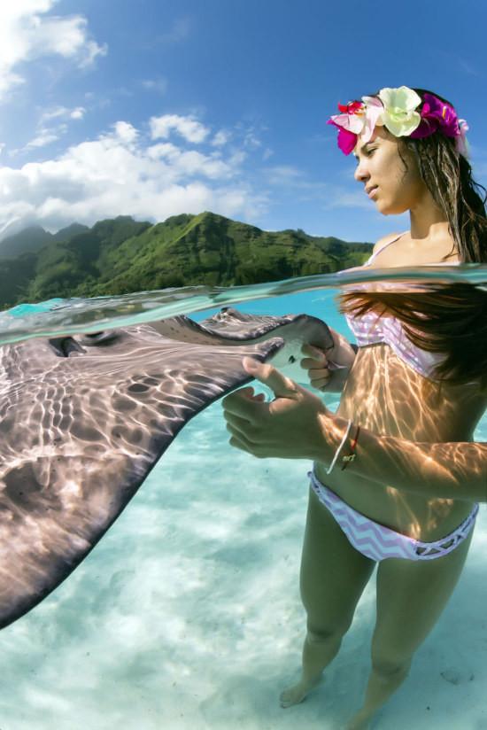 Удивительная фотосессия со скатами девушки, животные, скаты
