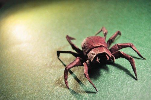 Spider by Dimdi  Etsycom