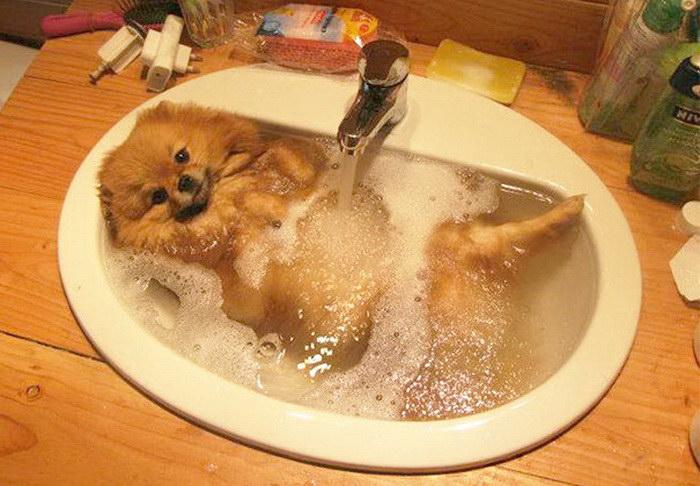 Моя новая ванная.
