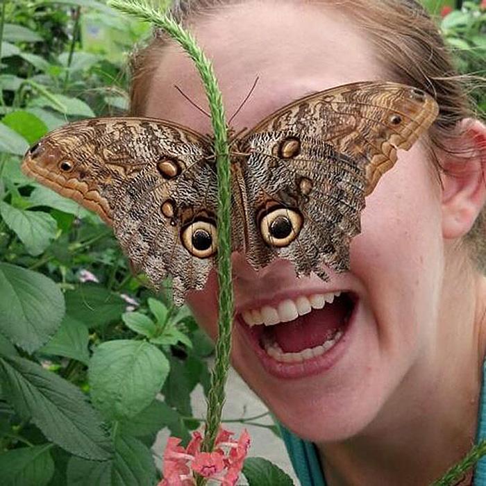 Маска-бабочка.