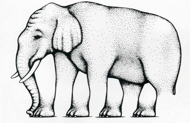 1. Сколько ног у слоника? гифки, прикол