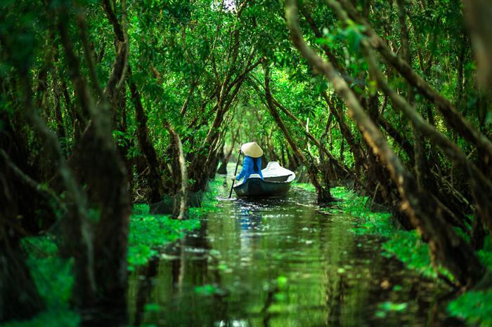 Лес Тра Су. Автор фото: Rehahn.