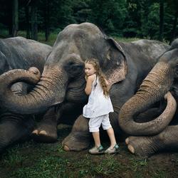Когда слова не нужны: дети и животные