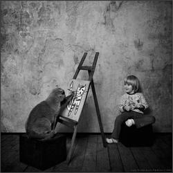 Соображалистый кот