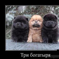 Интересное..... ))))