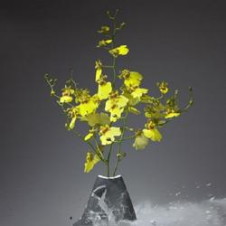 Остановись мгновение: 20 потрясающих снимков с разлетающимися вдребезги живописных ваз с цветами