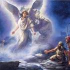 Кто таковой ангел? Кто такие ангел-хранитель, ангел погибели…