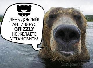 Grizzly Pro Антивирус