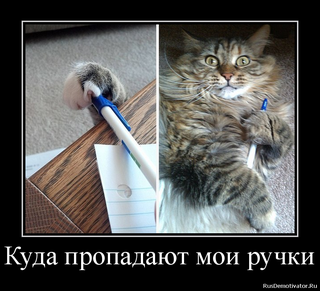Смешные фото приколы и мемы с котами и не только :)