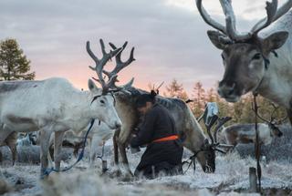 Другая реальность: кочевые племена Монголии, которые живут в тесной связи с природой
