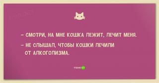 Анекдоты про котов и кошек;))