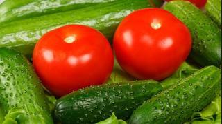 Лучшие удобрения для огурцов и помидоров