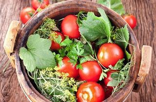 Выращиваем на даче засолочные сорта помидор