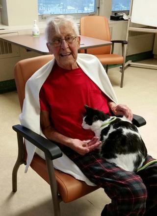 В эту больницу пускают кошек и собак, чтобы помочь их хозяевам выздороветь