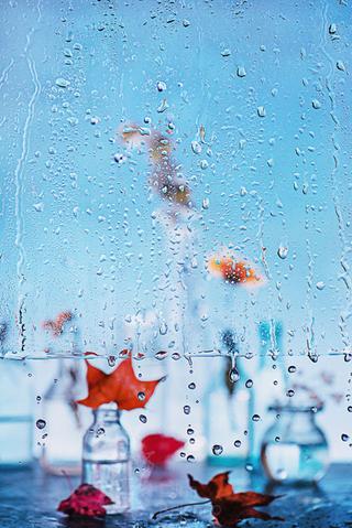Чем занять себя дождливым октябрем: осенние мотивы от фотографа из Хабаровска
