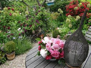 Дача: личный ботанический сад