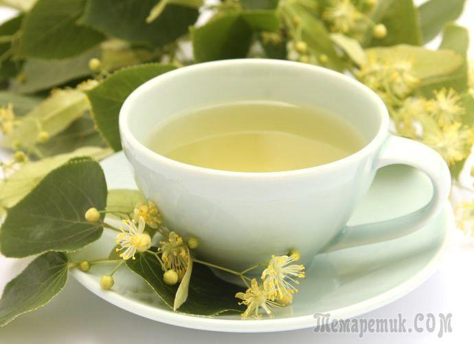 Как заваривать чай с липовым цветом