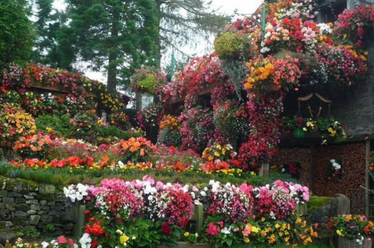 855 Цветочный дом