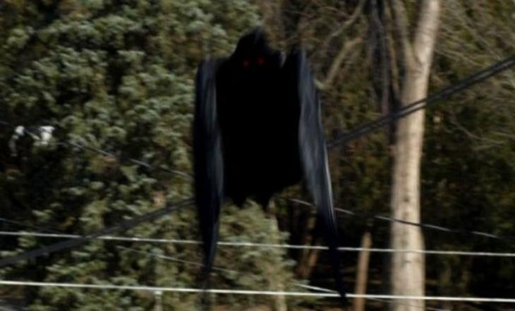 14. Человекоподобное летающее существо, замеченное Чили интересно, люди, мир, наука, феномен