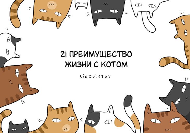 21 преимущество жизни с котом животные, иллюстрации, кошки