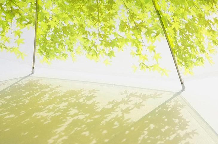 Umbrellas03 19 удивительных зонтов для осени
