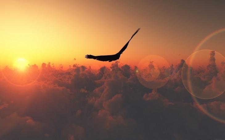 Menuju langit tertinggi