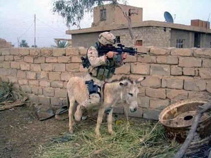 Американская кавалерия. армия, военные, прикол, юмор