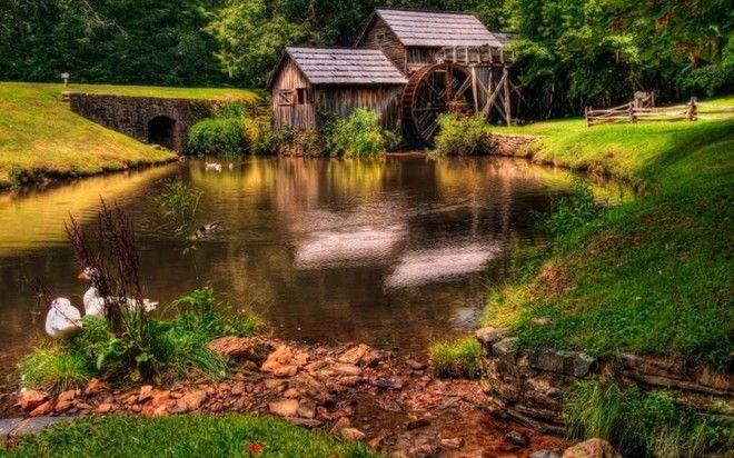 houseinwood18 Самые красивые дома в лесу