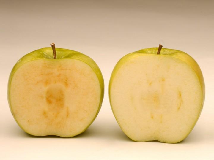 genmod04 7 ГМО продуктов, которые вынесут вам мозг