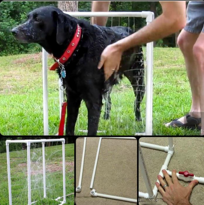 Летний душ для собак.
