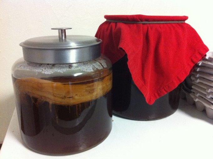 Чайный гриб можно купить либо приготовить самостоятельно