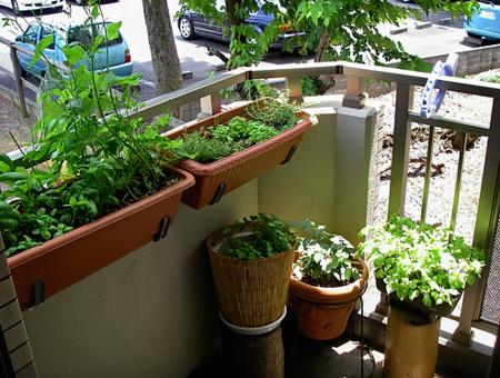 16 очаровательных сезонных идей для сада на балконе фото 13