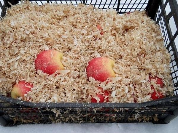 как хранить яблоки зимой, хранение яблок в домашних условиях