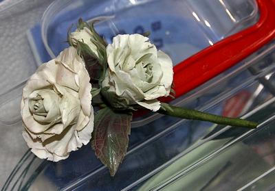 холодный фарфор роза
