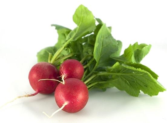Какие овощи можно выращивать на затененном участке?