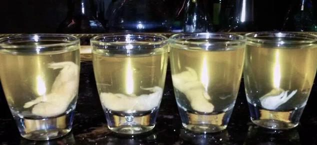 Самые опасные и необычные алкогольные напитки в мире